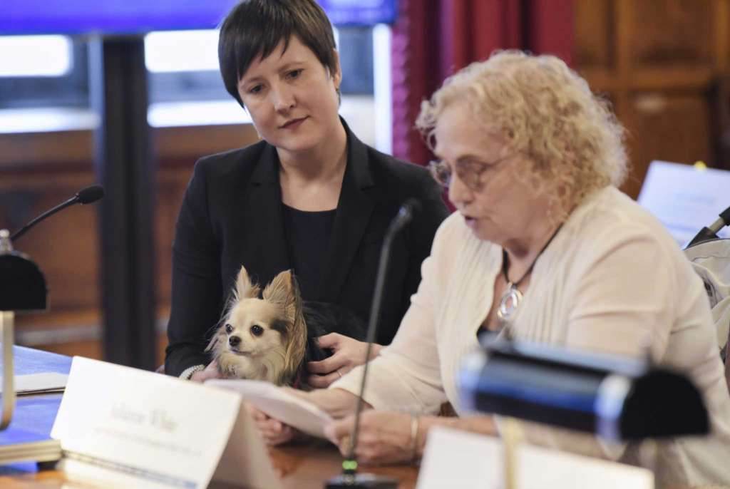 Julianne White, 76, appears with dog at Court of Appeals at hearing on civil legal services for poor